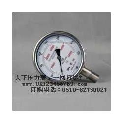 不锈钢压力仪表