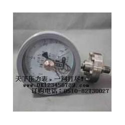 螺纹连接隔膜压力表系列